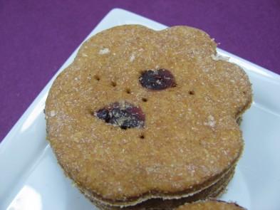 Pumpkin and Cranberry Dog Treat Recipe DoggyDessertChef.com