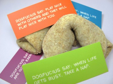 Fortune Cookies (I see a nap in your future)