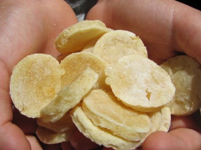 wheat free apple swiss chicken dog treat/biscuit recipe