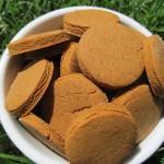(gluten-free) peanut butter molasses