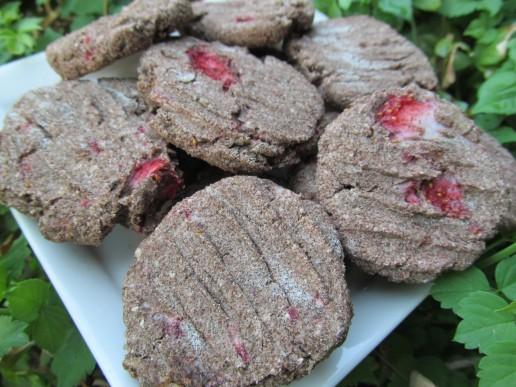 (grain and gluten-free) parmesan strawberry chicken dog treat/biscuit recipe