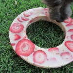 pb&j ice dog treat recipe