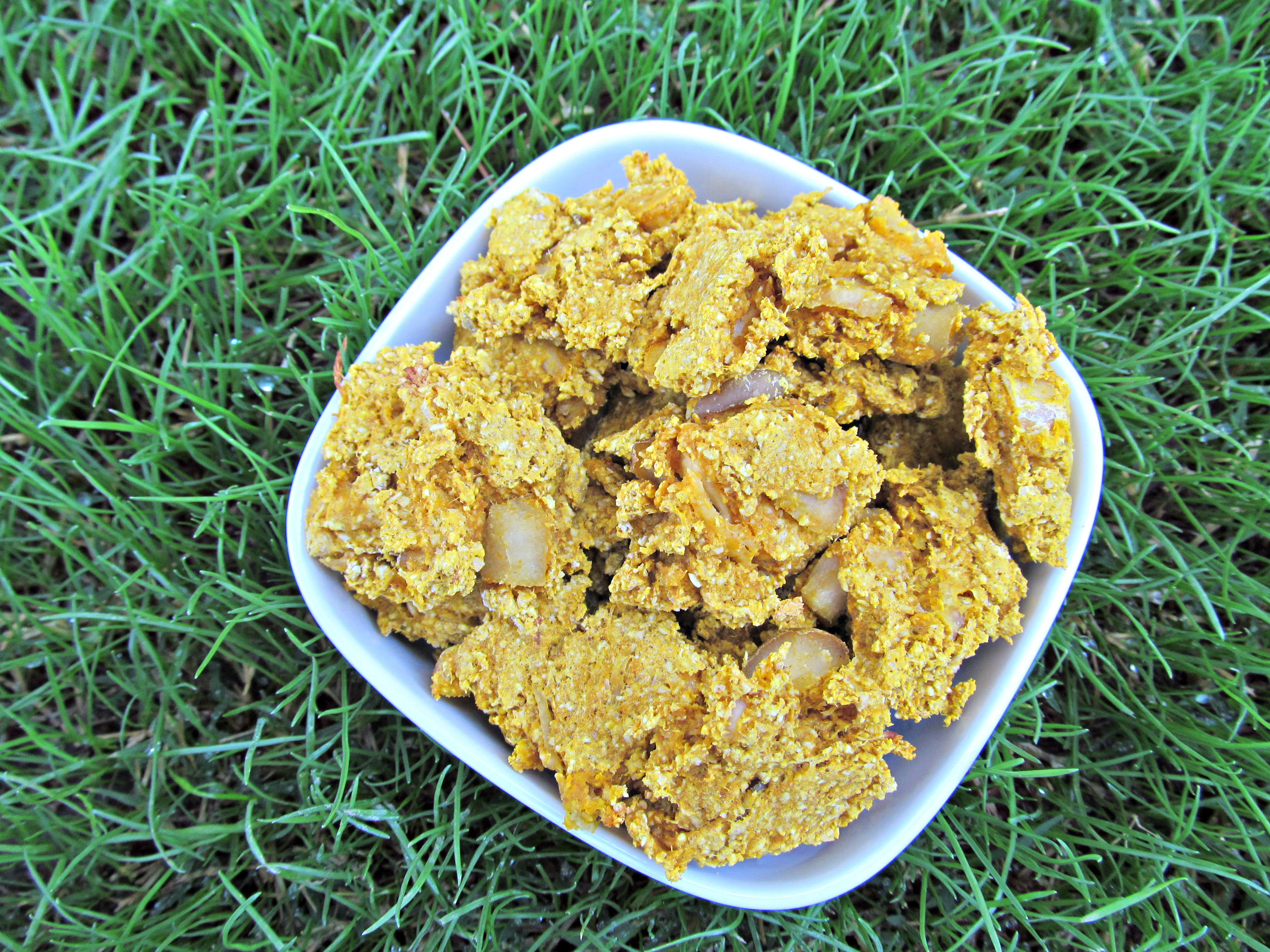(wheat and dairy-free) pumpkin pear chicken dog treat/biscuit recipe
