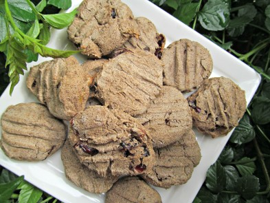 (grain, gluten, wheat-free and vegatarian) cranberry banana dog treat/biscuit recipe