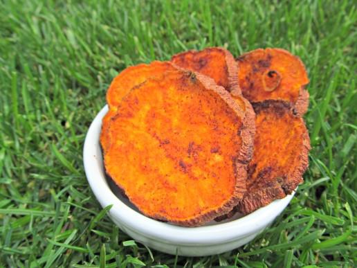 coconut cinnamon sweet potato chips treat recipe