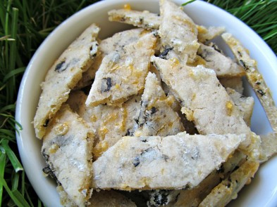 (gluten and wheat-free) cheddar seaweed dog treat recipe/biscuit