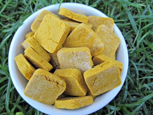 easy peasy peanut butter pumpkin dog treat/biscuit recipe