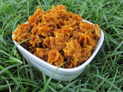 (wheat and dairy-free, vegan, vegetarian) ginger pumpkin oat dog treat/biscuit recipe
