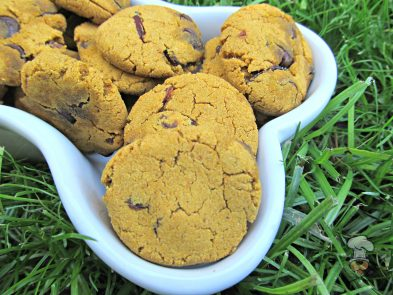 (wheat and gluten-free) carob cranberry pumpkin dog treat/biscuit recipe