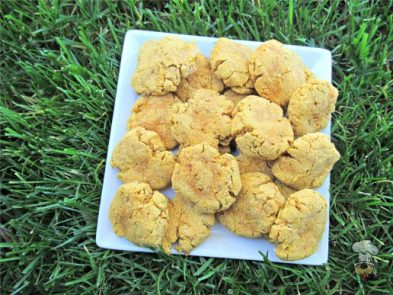 (gluten, grain and wheat-free) parsley pumpkin chicken dog treat/biscuit recipe