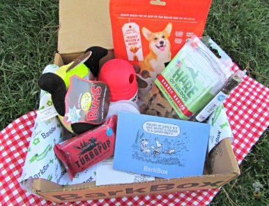 toys and treats, delivered! #BarkBoxDay