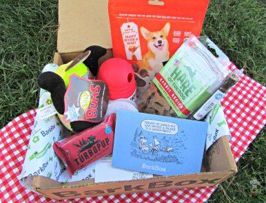 barkbox box