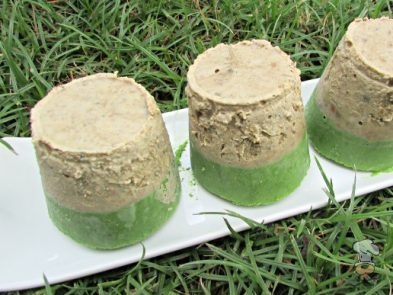 (wheat, gluten and grain-free) frozen chicken liver kale dog treat recipe