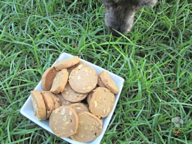 (wheat, gluten, dairy-free, vegan, vegetarian) double peanut, peanut butter dog treat/biscuit recipe