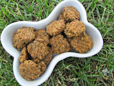 (dairy-free) butternut squash liver dog treat/biscuit recipe
