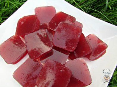 (wheat, gluten, grain and dairy-free) pomegranate apple gummy dog treat recipe