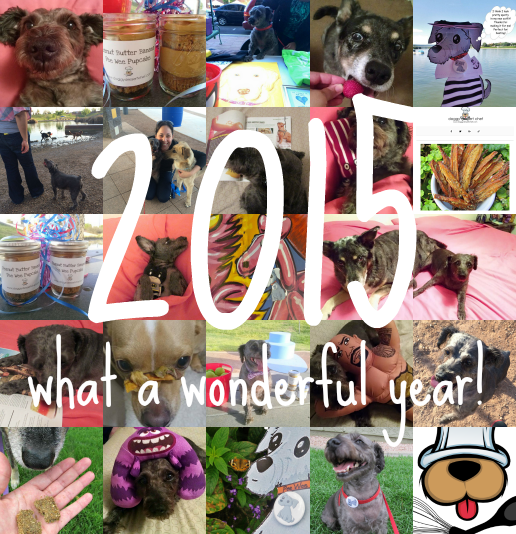 2015 another year of too much fun!
