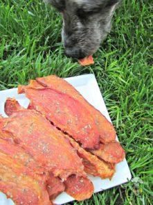 (wheat, gluten, grain and dairy-free) italian tomato chicken jerky dog treat recipe