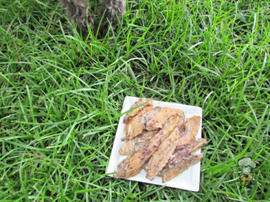 (wheat, grain, gluten and dairy-free) pineapple blueberry mint jerky dog treat recipe