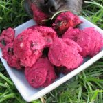 (wheat and gluten-free) rosemary beet kale dog treat/biscuit recipe