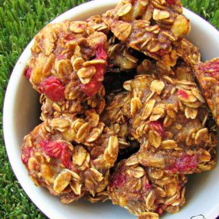 (wheat and dairy-free, vegan, vegetarian) raspberry banana dog treat recipe