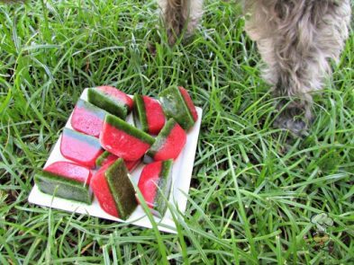 (wheat, gluten, grain, dairy-free, vegan, vegetarian) frozen strawberry spinach dog treat recipe