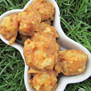 (wheat and dairy-free) pineapple peanut chicken dog treat/biscuit recipe