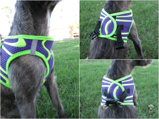{Doggy Design Spot Harness} Review :: Krazy for Pets