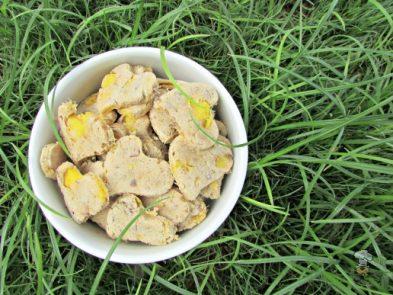 (wheat, gluten and dairy-free) mango lavender dog treat/biscuit recipe