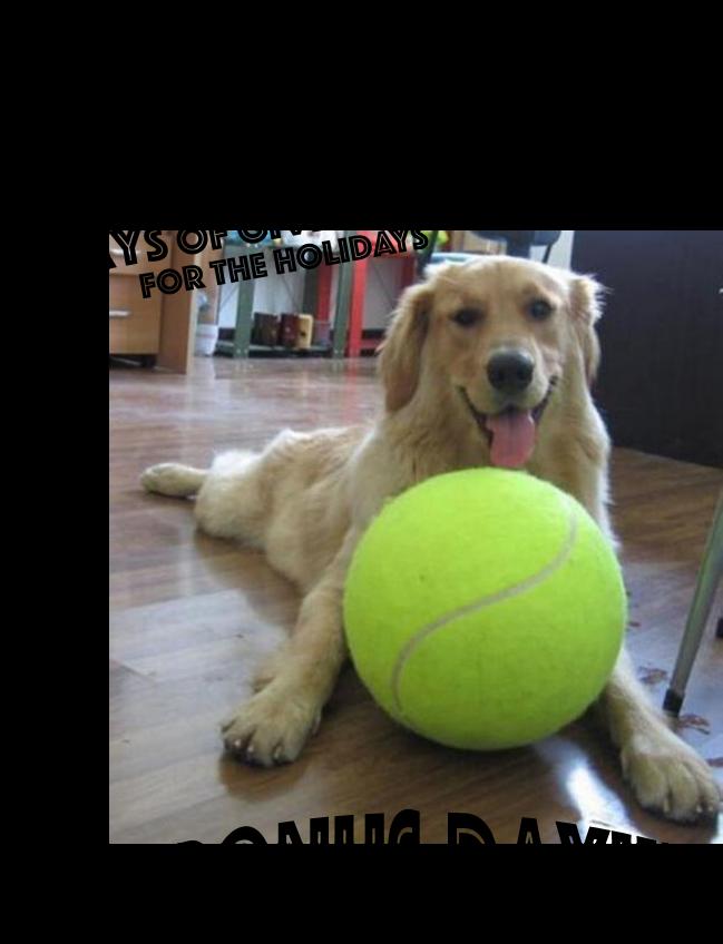 {bonus day!} Giant Tennis Ball