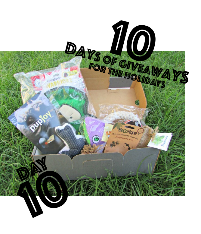 {Day 10 Giveaway} PupJoy :: Tailored premium dog box