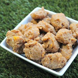 (wheat and dairy-free, vegan, vegetarian) apple squash dog treat/biscuit recipe