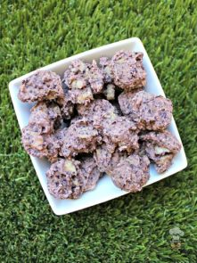 (wheat and dairy-free) blueberry thyme pork dog treat/biscuit recipe