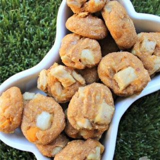 (wheat and dairy-free) sweet potato pork with apple dog treat/biscuit recipe