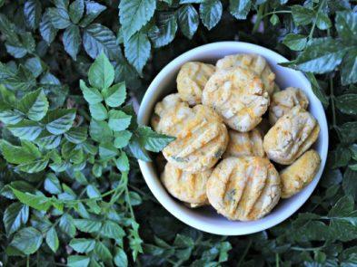 butternut squash chicken