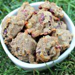 (gluten and grain-free) apple swiss cranberry dog treat/biscuit recipe