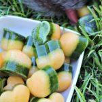 frozen spinach cantaloupe