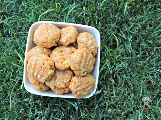 (wheat-free) zucchini cheese and carrots dog treat/biscuit recipe