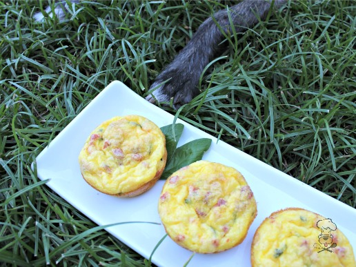 (wheat, gluten and grain-free) bacon & cheese mini-quiche dog treat recipe