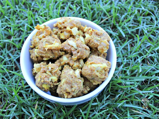 honey turmeric chicken dog treat/biscuit recipe