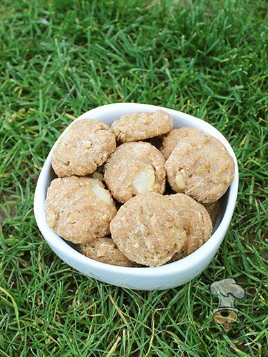 (wheat-free) cinnamon sunflower pear dog treat recipe