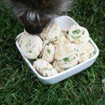 creamy chicken cilantro